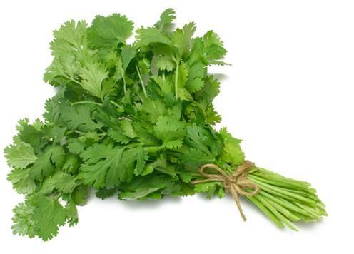 Cilantro o Coriandro para cuidar estomago, higado y riñones, depurar y mejorar las defensas http://www.ecoagricultor.com/cilantro-propiedades-medicinales/
