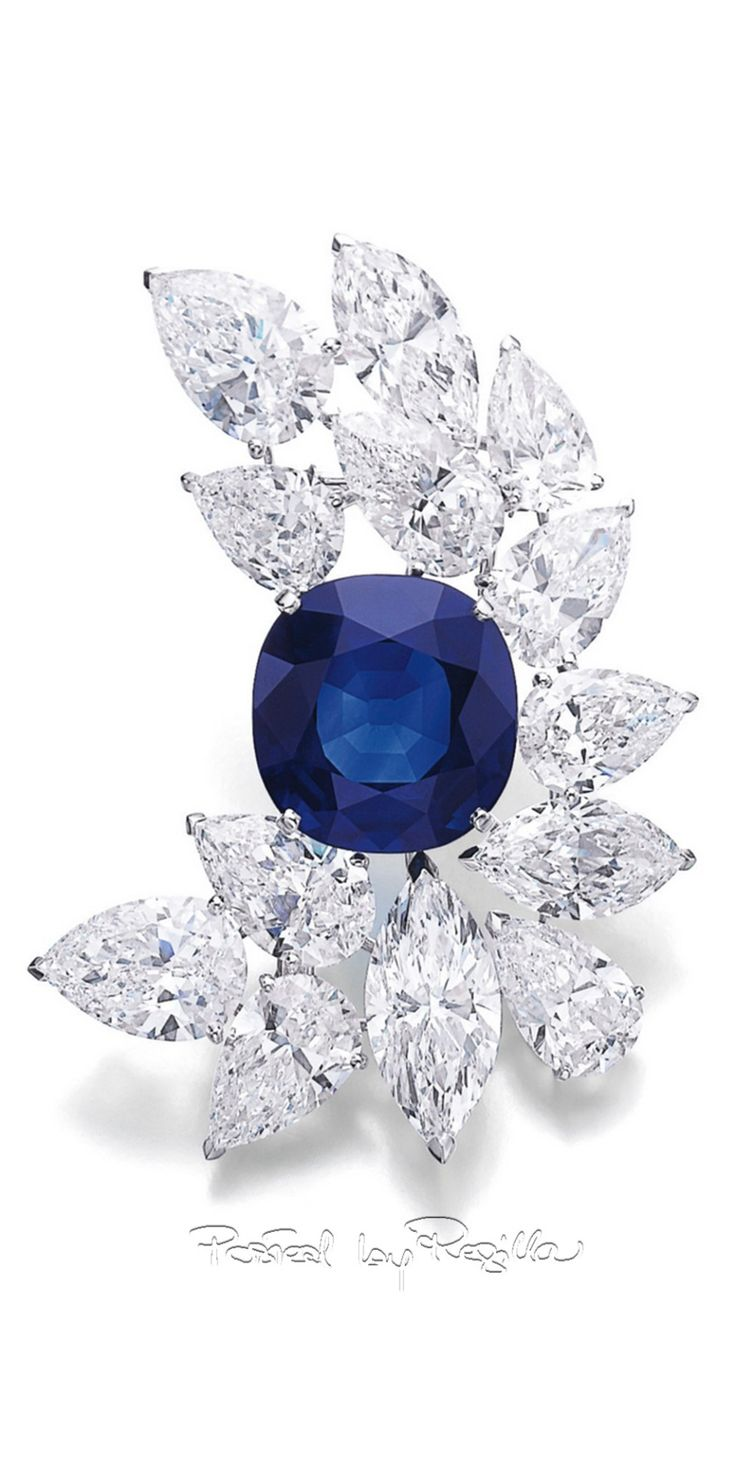 Regilla ⚜ sapphire and diamond brooch, Cartier
