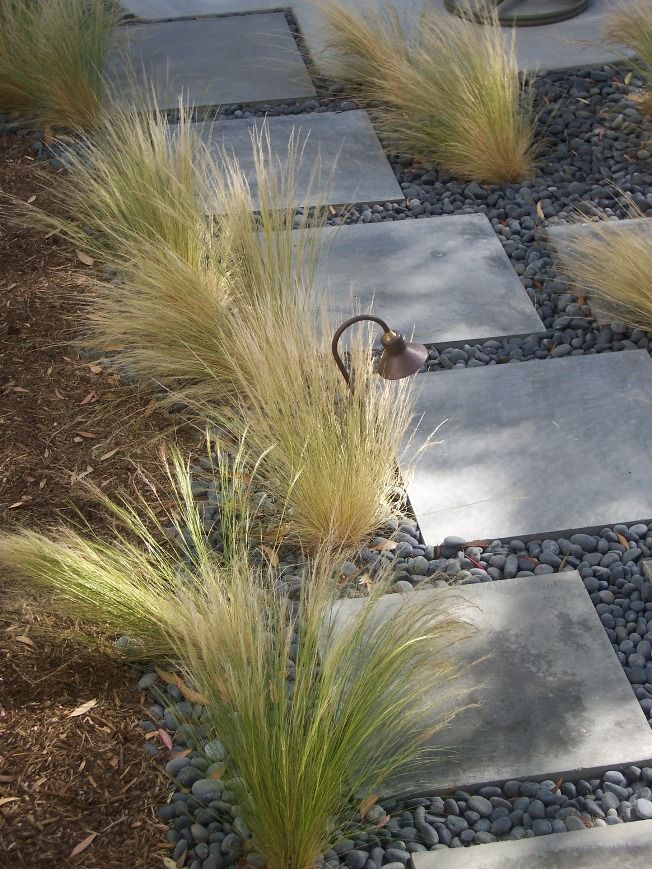 Stepping Stones with Mexican Feather Grass