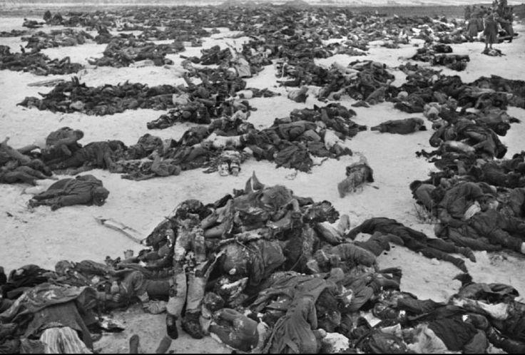 Batalla de Stalingrado (23/8/1942-2/2/1943). Este enfrentamiento con más de 2.000.000 de victimas entre soldados y civiles, es considerada la más sangrienta de la historia de la humanidad.