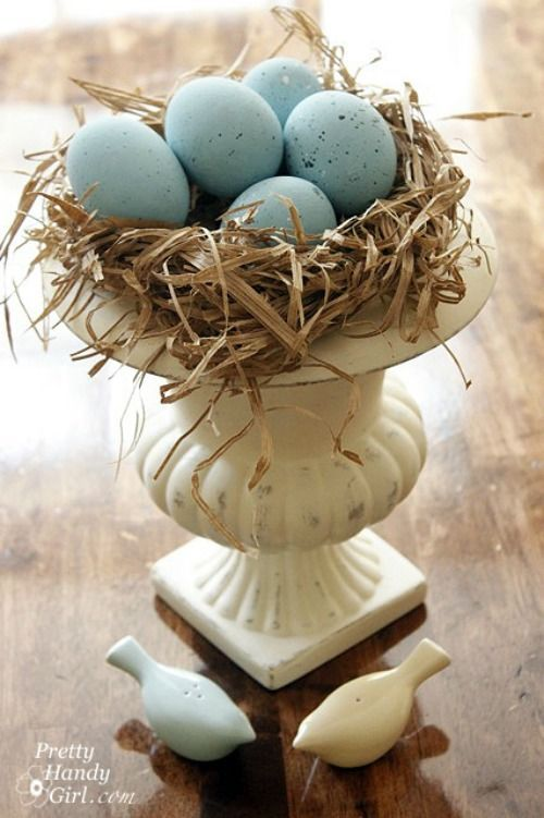 Make this beautiful nest with blue robins eggs – so easy and made from real eggs!.Spring & Easter Home Decor Ideas on Frugal Coupon Living.