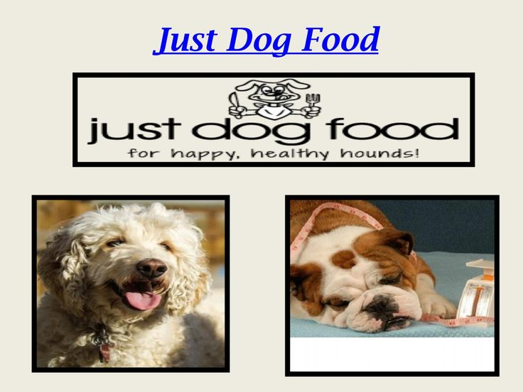 Natural animal solutions to calm your Dog with Natural Pet Food Online, Best All Natural Dog Food, - Good Pet Food Brands at Just Dog Food. # https://www.justdogfood.com.au/