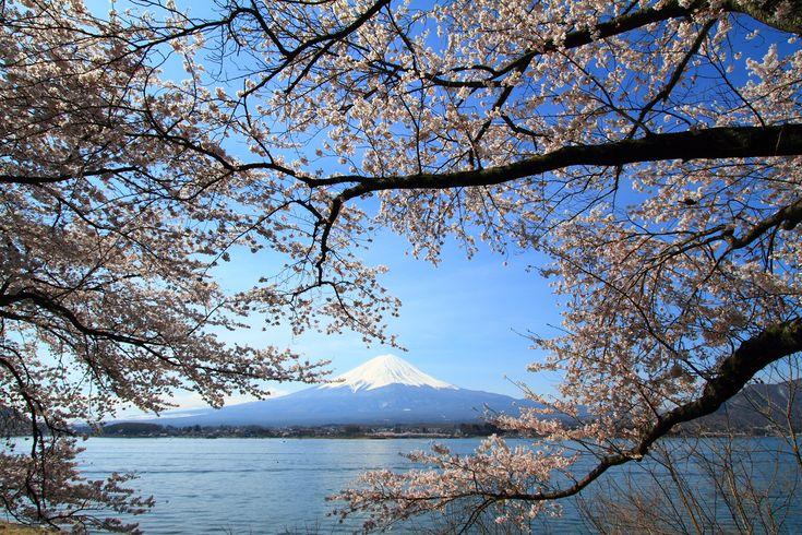 Kawaguchi Lake.  by Skyseeker