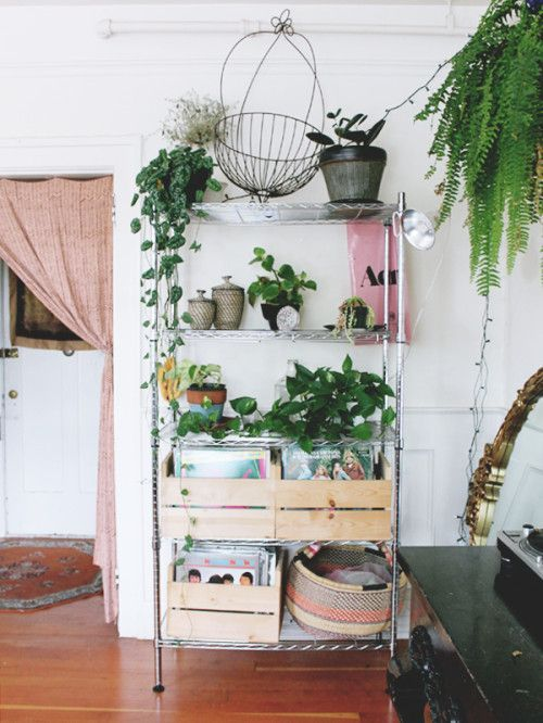 wooden crates for records, plants overflowing on wire shelves, african market basket
