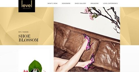 level Shoe District is clean site of fashion having white background, responsive layout, nice graphics and jquery work. http://minimalistgallery.com/