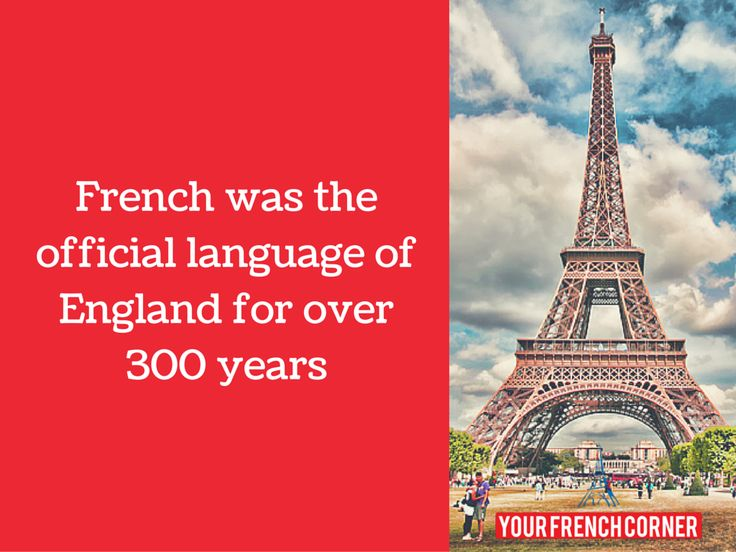 9 Shoking facts about France. yourfrenchcorner #travelfrance #wanderlust #holiday . Repin for later :-)