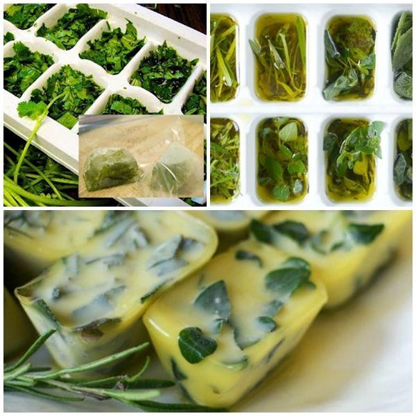 Congelar hierbas frescas en aceite de oliva