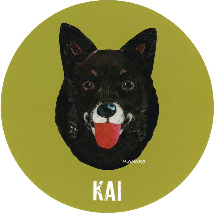 マイ @Behance プロジェクトを見る : 「016   Kai」 https://www.behance.net/gallery/42194445/016-Kai