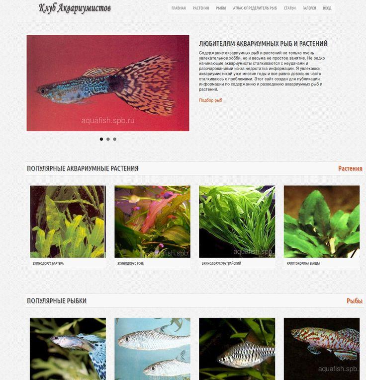 Клуб аквариумистов