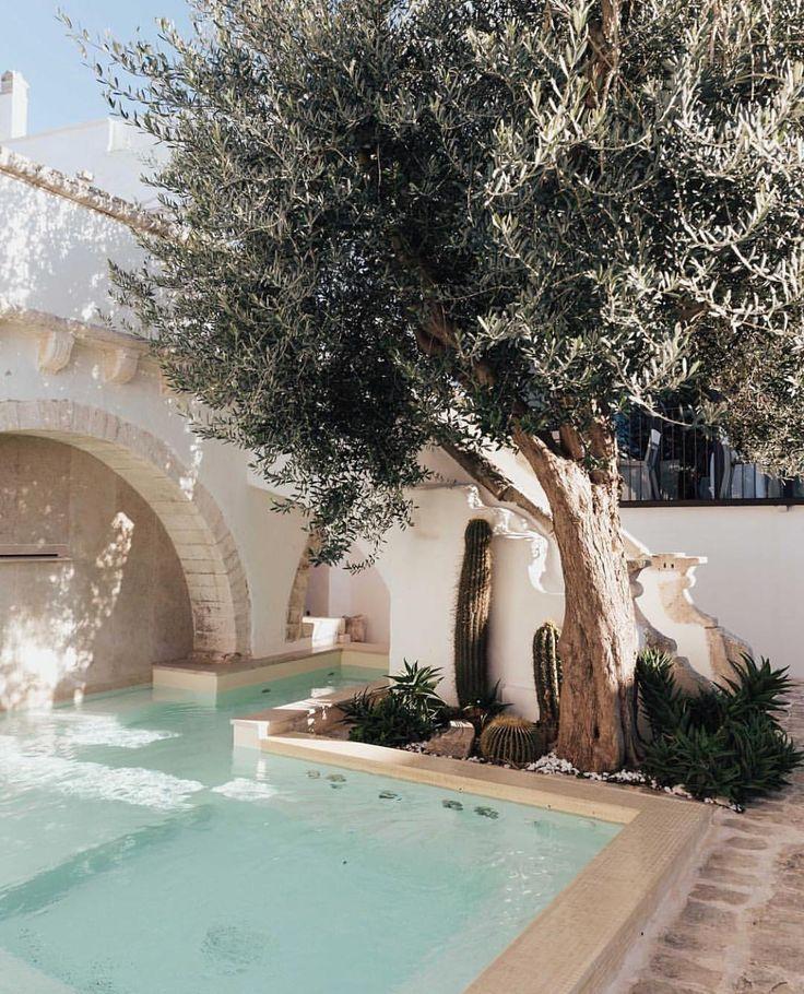 Wundervolles Traumhaus Mit Pool Unter Einem Fantastisch Gewachsenen Olivenbaum Traumhaus Dreams Traumewerdenwahr Entspannung Outdoor Pool Swimming Pools