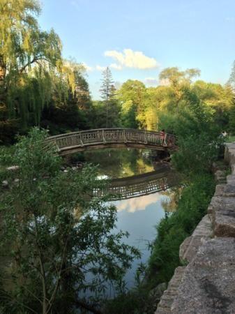 Edwards Gardens Reviews - Toronto, Ontario Attractions - TripAdvisor