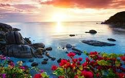 tenger bougainvillea kövek és sziklák naplemente