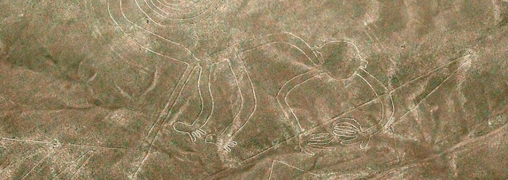 Les Lignes de Nazca : Le singe