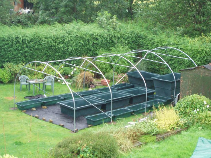 A series of blog entries by someone developing their own garden sized aquaponic system.  Plenty of pics and drawings.