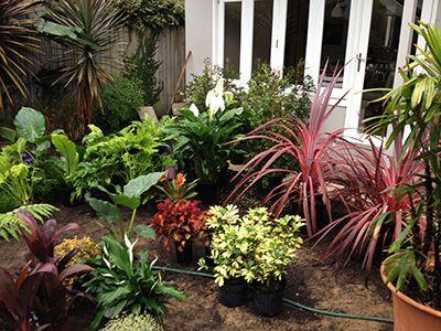 Landscaping Services in Randwick, Sydney NSW Australia. #sydney #landscaping #paving #verticalgarden #retainingwall #bamboo #fencing #plants #grass #decking #pots
