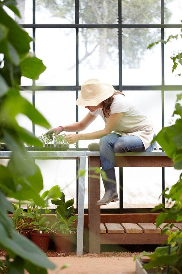 "Babylonstoren Organic Farm and Hotel, South Africa ...  A unique 12 room hotel embracing the ""Farm to Table"" experience, raising all their own organic veggies, birds/eggs and livestock. Guest can pluck their own veggies and cook in their own contemporary kitchen of their bungalow, or let the Chef's ""pick and prepare"" at the restaurant."