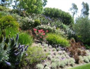 21 best jardin en pente ou rocaille images on Pinterest | Terrasses ...