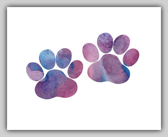 Dog paw Dog paw prints Dog paw print Watercolor Water