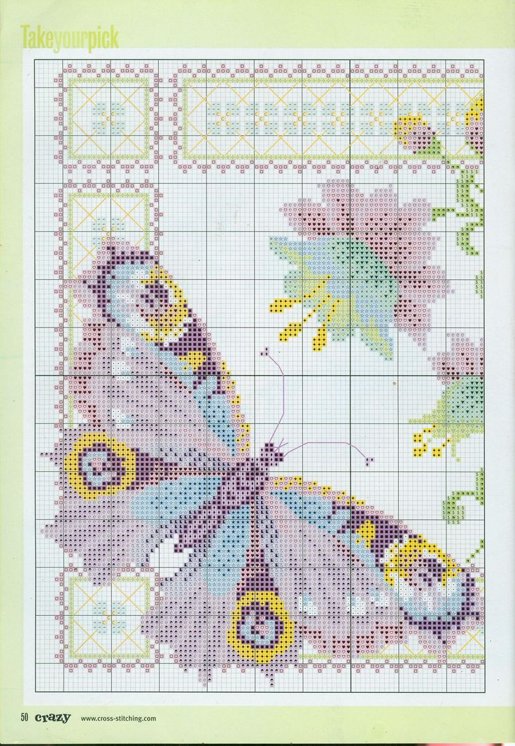 a butterfly1