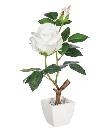 loving this tall potted rose dcor on zulily zulilyfinds