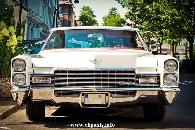 كيف تشتري سيارة مستعملة في كندا بأفضل سعر كيف تشتري سيارة مستعملة في كندا بأفضل سعر Buy Used Car Canad Muscle Cars For Sale Buy Classic Cars Old Classic Cars