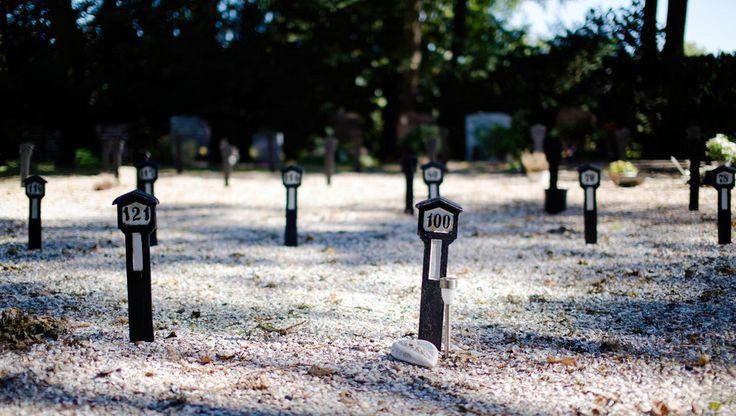 Grote verhalen over de zin van het leven zijn nauwelijks nog te horen op uitvaarten, schrijven thanatologen in een boek dat vandaag verschijnt. Nabestaanden zoeken nu zelf naar de betekenis van de dood.
