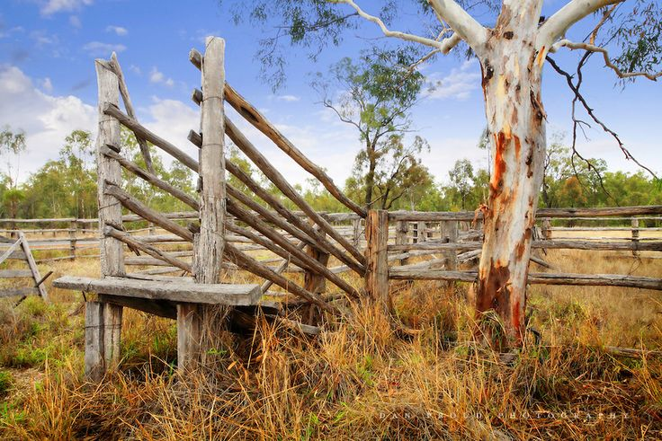old cattle yards - Google Search