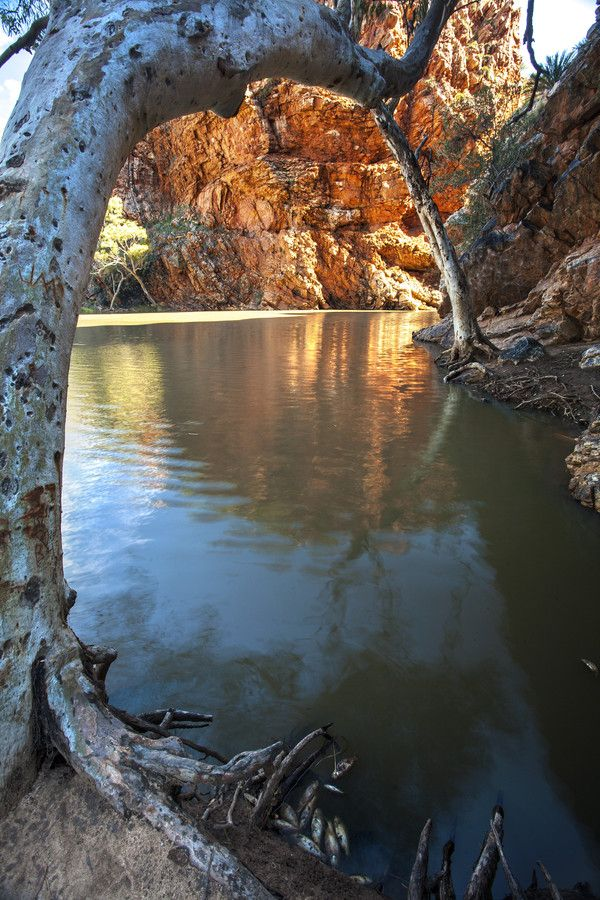 Ellery Creek Big Hole in the West Mcdonnell Ranges in the Northern Territory, Australia
