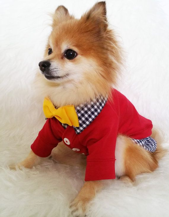 Check out this item in my Etsy shop https://www.etsy.com/ca/listing/246068364/dog-red-cardigan-xs4xl-size-puppy