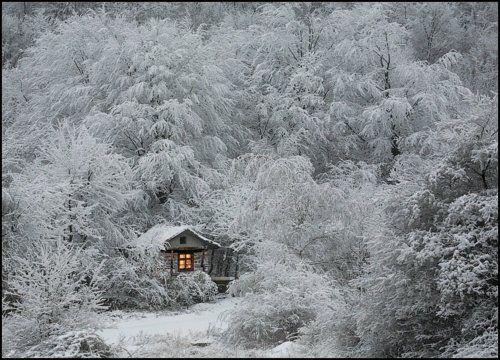 live here for the winter
