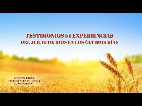 (IX) - Testimonios de experiencias del juicio de Dios en los últimos días | Evangelio del Descenso del Reino