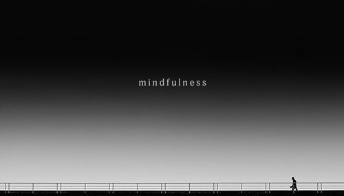 Thich Nhat Hanh Inspiration – The Miracle of Mindfulness — Mind Fuel Daily