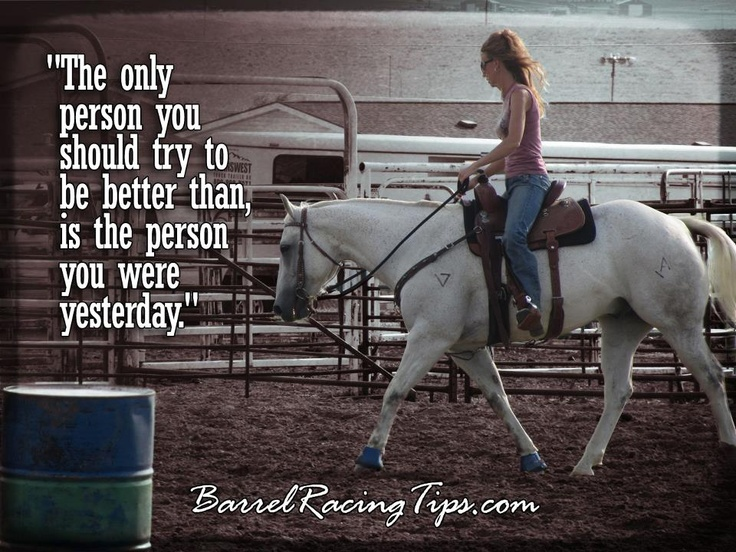 124 Best Horse Quotes Images On Pinterest