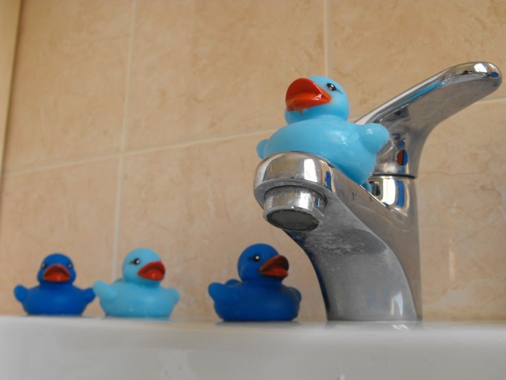 The four blue duck have fun in Blu Bed & Breakfast