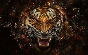tiger, glass, grin