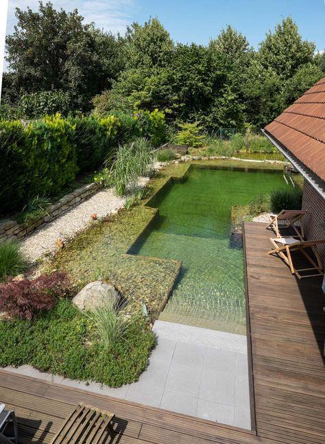 DSCF1364 – Der Treffpunkt für Schwimmteich und Na…