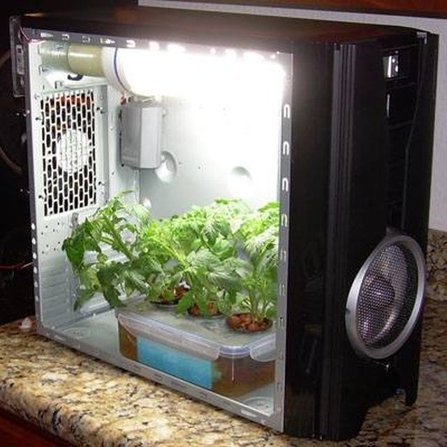 An Old PC Converted into a Grow Box