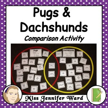 This is a hands-on comparison activity that can be completed as a class or in small groups. It focuses on comparing pugs and dachshunds with each other in a Venn Diagram activity.I use this activity when using the Pig the Pug books by Aaron Blabey. These activities will work with any of the books and is best done prior to reading the book to look at the characters vs breeds.Sorting circles or hulahoops are needed to be the Venn diagram for students to sort.