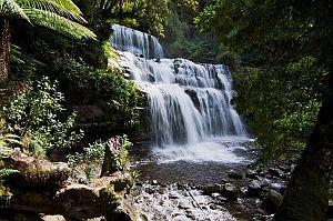 Liffey Falls - a Mole Creek feature walk