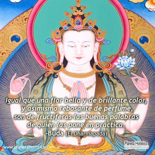 Frases de Buda. Enseñanzas y Reflexiones budistas. Biografía de Buda y explica…