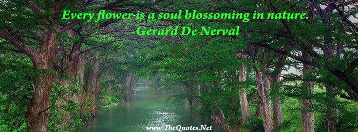 Gerard De Nerval Quote Every flower is a soul blossoming in nature. #nature