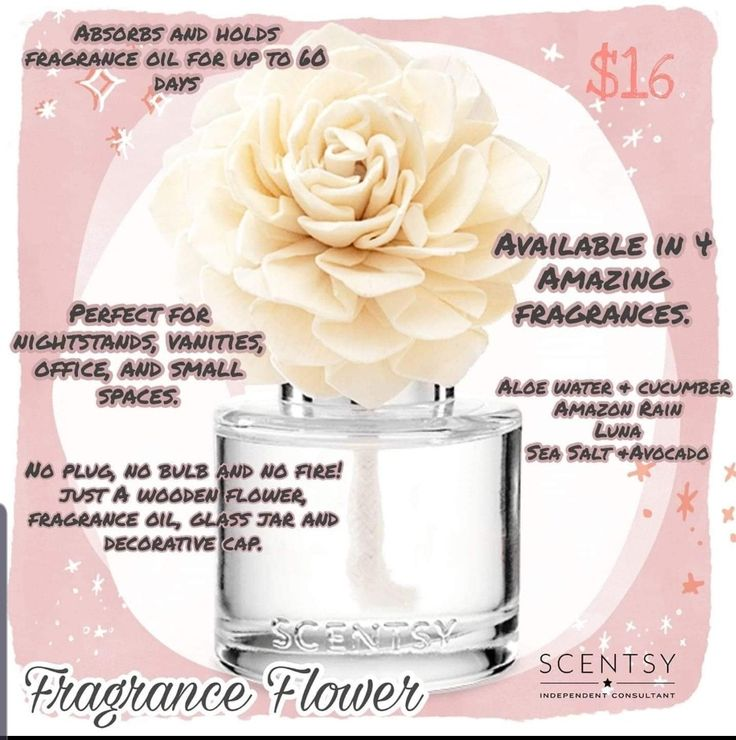 New fragrance flower last 60 days perfect for offices