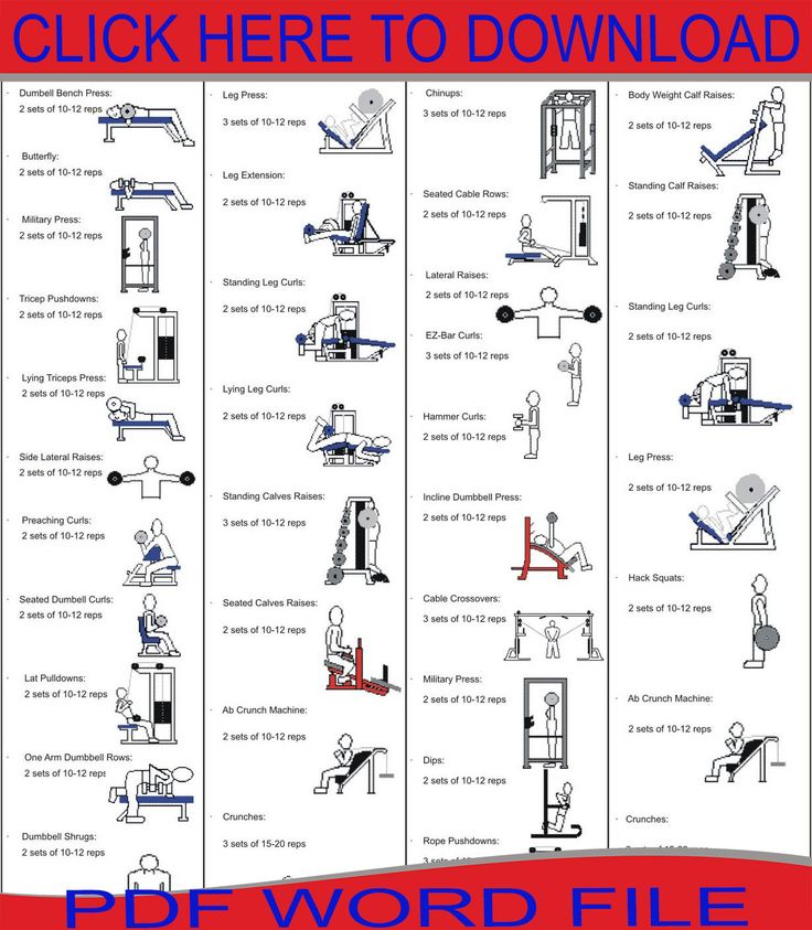 Chest Workout Beginners gym workout plan, Gym workout