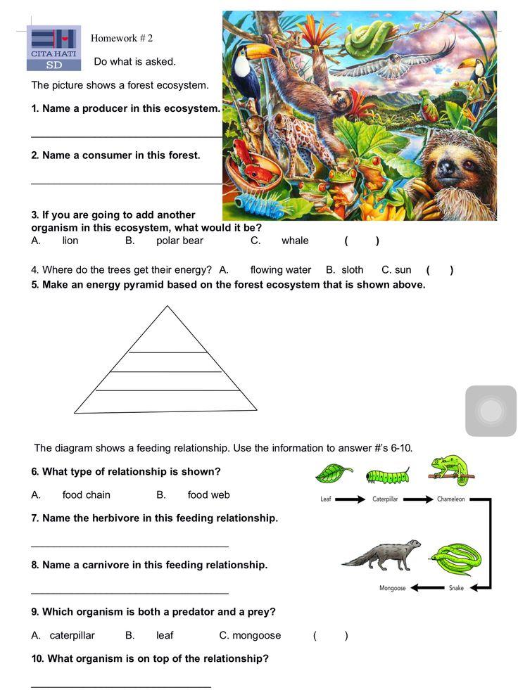 Homework #2