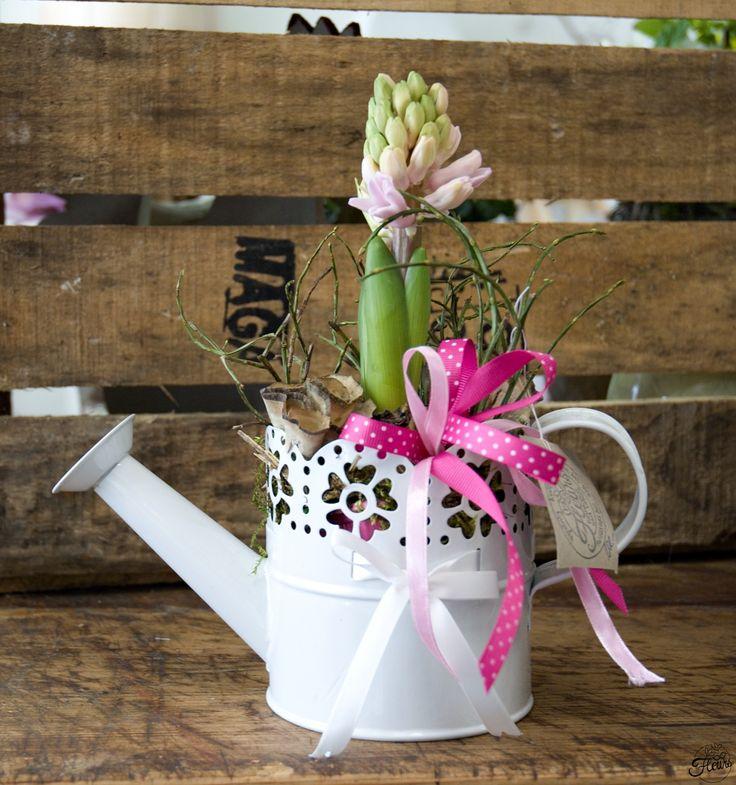 Jarní konvička s hyacintem / Květiny Fleurs #spring #easter #decoration #arrangement #hyacint