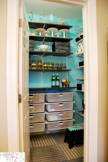 Color Ideas For Painting The Inside Of Our Two Pantry/storage Closets.modern  Closet By Nicole Lanteri, On My Agenda LLC
