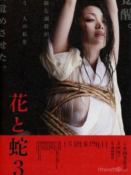 Xem Phim Online Phim Hay Xem Phim Hd Hoa Va Ran 3 Flower Snake 3