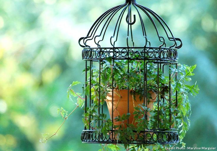 Plus de 1000 id es propos de diy jardin sur pinterest for Oiseaux metal pour jardin