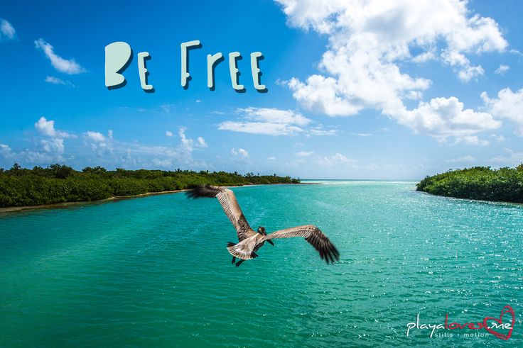 {#InspireDesign} Free yourself, free your style.... Be free!   (Photo courtesy @playalovesme)  #playadelstyle #playalovesme