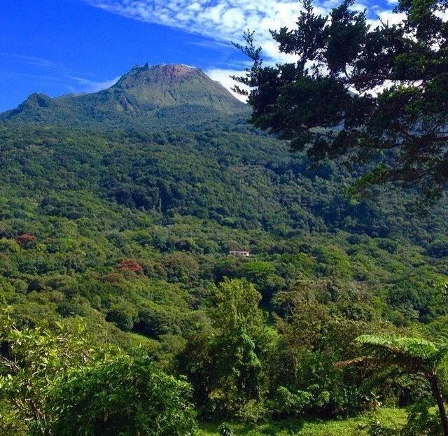 La Soufrière, surnommée « vié madanm la » en créole guadeloupéen ou « la vieille dame » en français, est un volcan en activité situé sur le territoire de la commune de Saint-Claude en Guadeloupe, dans le parc national du même nom ®Salomé Vanderheyden #VoyagesPassionTerre